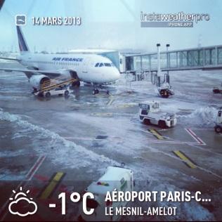 Bonjour et au revoir Paris enneigé, Tôkyô j'arrive !! パリこんにちはとさようなら( ^_^)/~~~東京私が来ています!