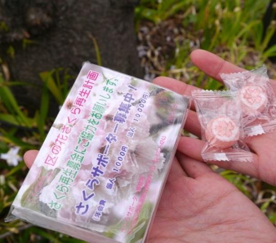 I'm a Chiyoda-ku sakura supporter!