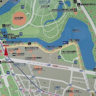 Les allées de cerisiers sont indiquées sur les plans de quartier, c'est très pratique !