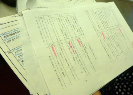 Voice over script, japanese version, annotated by Shunsuke Sakai