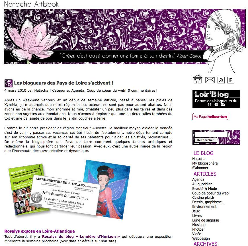 Natacha Artbook : Blog d'artiste (FR) 2010