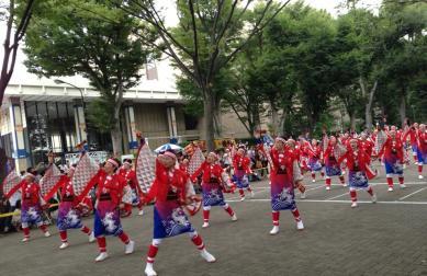 2013-japon-tokyo-matsuri-super-yosakoi-harajuku-02