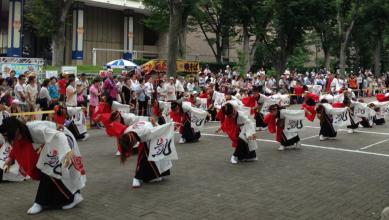 2013-japon-tokyo-matsuri-super-yosakoi-harajuku-07