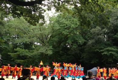 2013-japon-tokyo-matsuri-super-yosakoi-harajuku-12