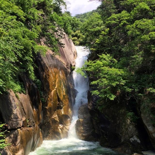 仙ヶ滝、きれいですずしいです!Sengataki fall. Just pure view!!
