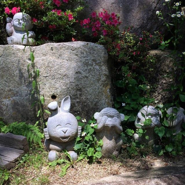 うさぎちゃんがいつも嬉しそうですね。The rabbit is always the happiest (=^x^=)