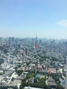 The splendid view from Roppongi Hills observatory