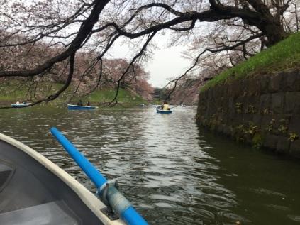 sakura-hanami-2015-chidorigafuchi-boat-2