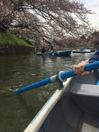 sakura-hanami-2015-chidorigafuchi-boat-3