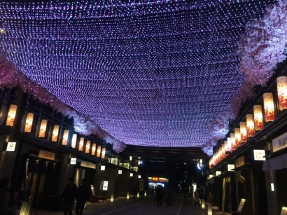 sakura-hanami-2015-nihonbashi-2