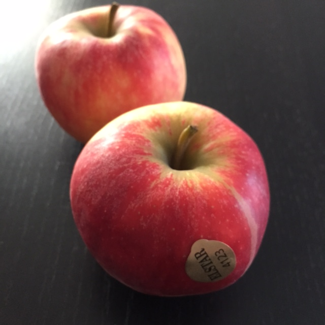 pommes-elstar