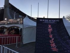 ayumi-hamasaki-countdown-live-2015-2016-made-in-tokyo-yoyogi-rosalys - 9