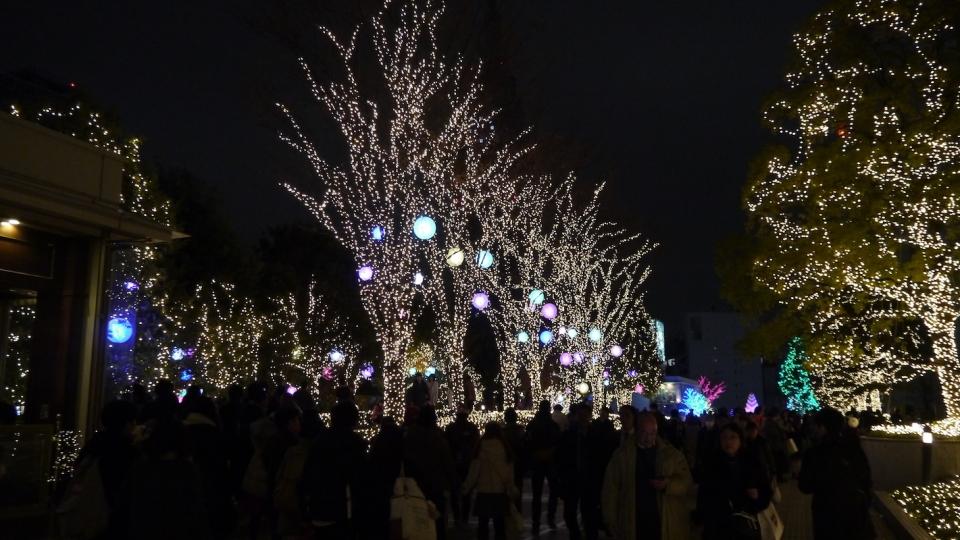 shinjuku-illuminations-youtube-rosalys--