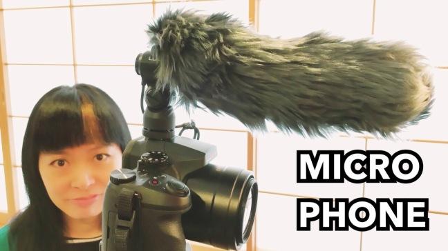 microphone-canon-stereo-panasonic-DMW-MS2