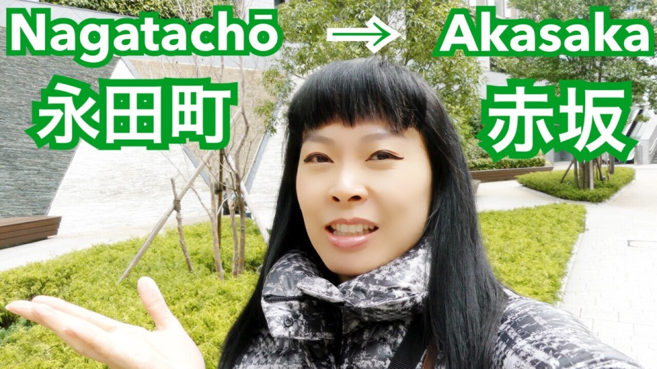 tour-nagatacho-akasaka